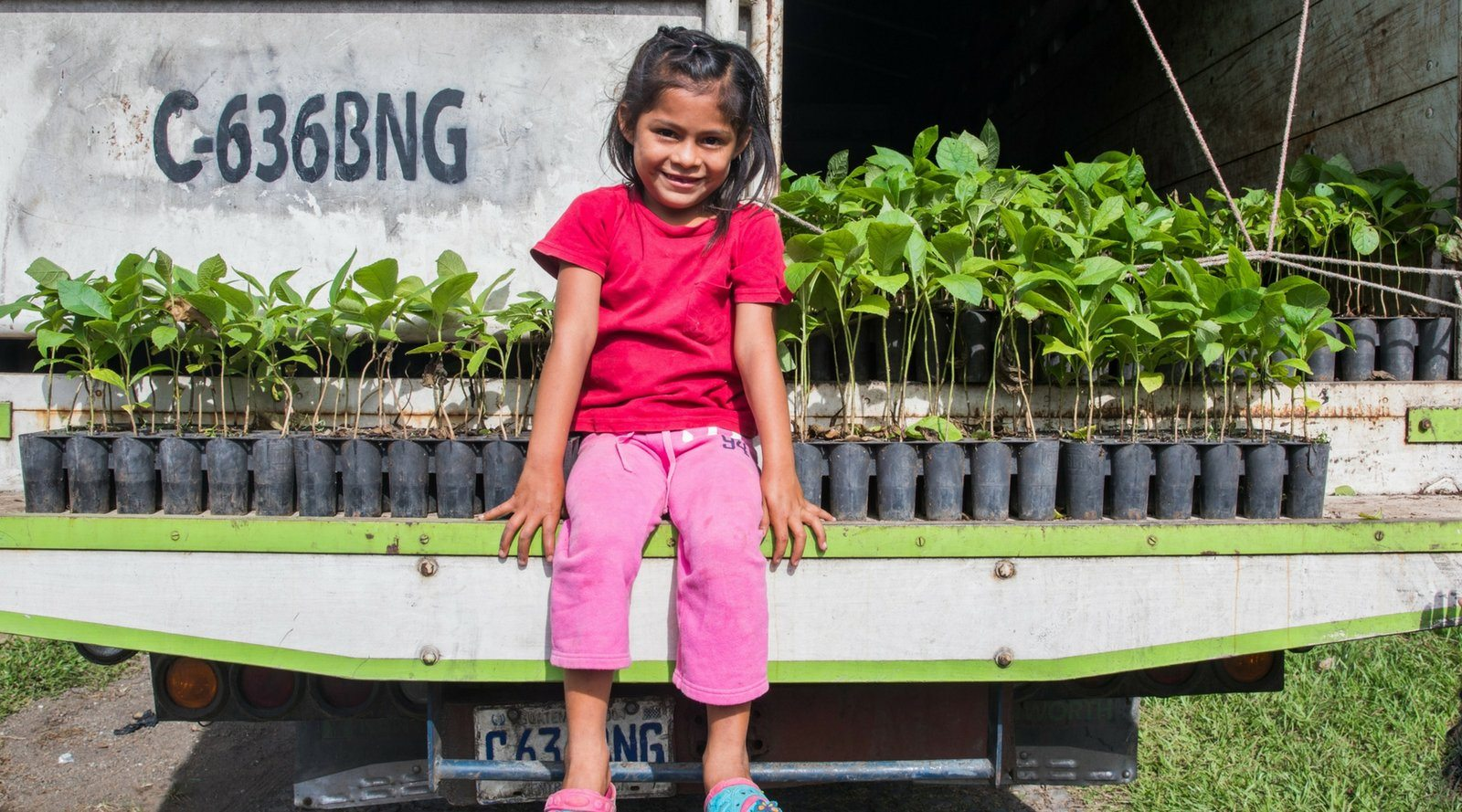 Little girl sitting in front of seedlings. How our business took more steps to being sustainable this season